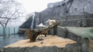 Зоопарки Европы: Пражский зоопарк зимой