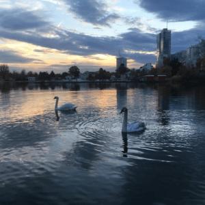 Река всех столиц Европы